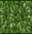 seamless green pattern christmas tree branches vector image