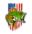 bass fish background usa flag in grunge vector image
