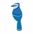 blue jay bird bird vector image