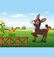 cartoon happy donkey with farm background vector image vector image