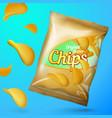 chips mockup template golden foil pack vector image