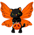 Cute Halloween cat vector image vector image
