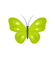 exotic butterfly icon flat style vector image