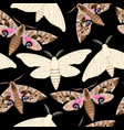 flying moths seamless vector image