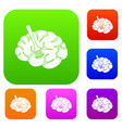fork is inserted into the brain set color vector image vector image