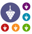 grapes on the branch icons set vector image vector image