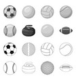 isolated object of sport and ball sign set of vector image