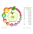 Vitamins in Apple vector image vector image