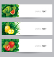 Watermelon Pineapple Strawberry Banner vector image vector image