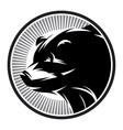 Sport Pattern monochrome logo with bear vector image