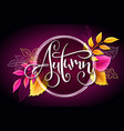 banner with hand lettering label - autumn vector image vector image