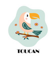 cute cartoon toucan isolated on white background vector image