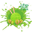 ice cream pistachio ball dessert choose your taste vector image vector image