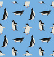 penguins blue background seamless pattern vector image