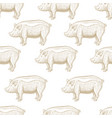 pig engraving seamless pattern vector image