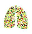 lungs healthy silhouette vector image vector image