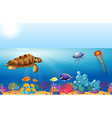 Sea animals swimming under the ocean vector image