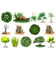 set different plants vector image vector image