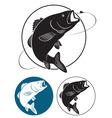 fish bass vector image vector image