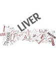 liver foods that make your liver stronger and vector image vector image