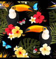 toucans and flowers vector image