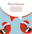 Winter style of a cute birds wearing christmas hat vector image vector image