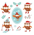 Cute winter owls vector image