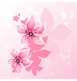 Cherry blossom vector image vector image
