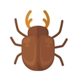 cockchafer Icon of bright small insect vector image vector image