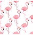 flamingo seamless pattern pink flamingo standing vector image