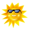 Funky fashionable sun wearing spectacles vector image