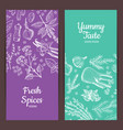 hand drawn herbs spices banners vector image