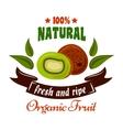 Natural organic fruits symbol with fresh kiwi vector image vector image