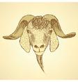 Sketch cute goat head in vintage style vector image vector image