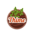 Thime Spice vector image vector image