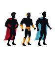 group superhero people costume character vector image