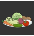 A plate with vegetables vector image vector image
