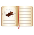 Cockroach anatomy on a book vector image vector image