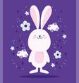 cute pink rabbit clouds dflowers cartoon vector image
