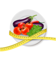 Diet meal Vegetables vector image vector image