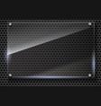 Elegant metallic mesh background with glass vector image vector image