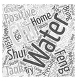 Feng Shui Home Tips Word Cloud Concept vector image vector image