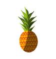 fresh pineapple fruit vector image