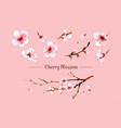 sakura flower set sakura flower vector image vector image