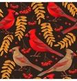 Seamless cardinal and rowan vector image vector image
