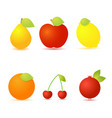 set of fresh fruit on a white background vector image