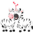 sweet zebra couple cartoon hugging with smile vector image