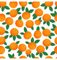 tangerines seamless pattern isolated on a white vector image vector image