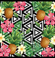 tropical flower and pineapple with abstract vector image vector image