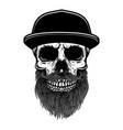 bearded skull in baseball cap design element vector image vector image